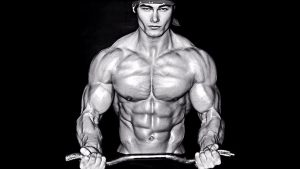 jeff seid bodybuilding